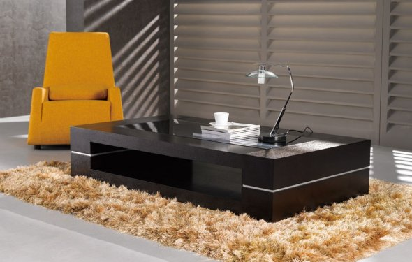 Modern Coffee Table Home