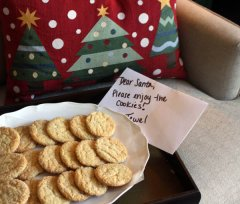 xmas designing Tips: Christmas time Throw Pillow, Cookies for Santa