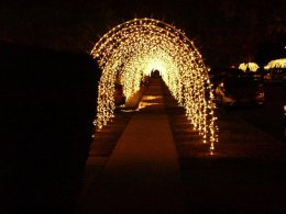 Reseda-Tunnel-of-Lights
